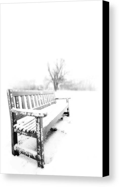 Winter Canvas Print featuring the photograph Winter Time by Svetlana Sewell