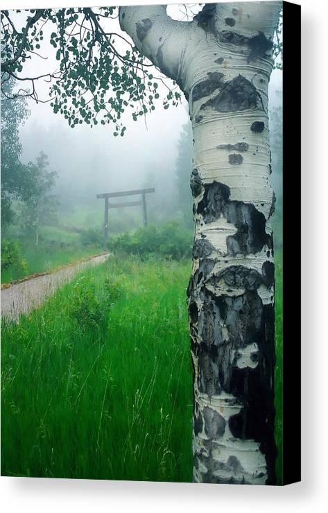 Aspen Canvas Print featuring the photograph Aspen Gate Mist by Karl Manteuffel
