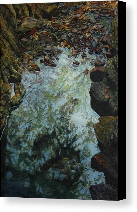 Creek Canvas Print featuring the painting Canyon Study by Craig Gallaway