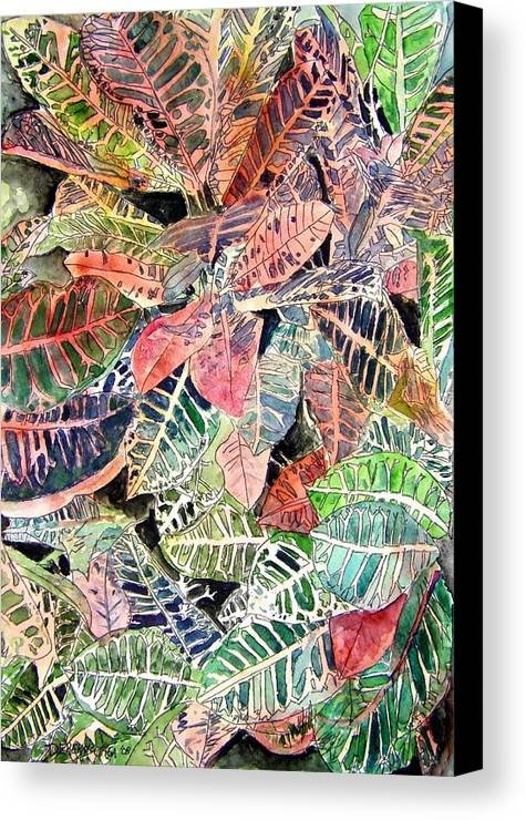 Croton Canvas Print featuring the painting Croton Tropical Art Print by Derek Mccrea