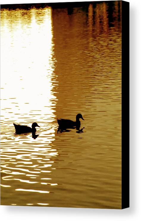 Silhouettes Canvas Print featuring the photograph Ducks On Pond 2 by Steve Ohlsen