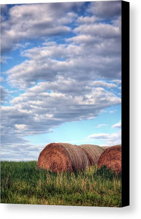 Hay Canvas Print featuring the photograph Hay It's Art by JC Findley