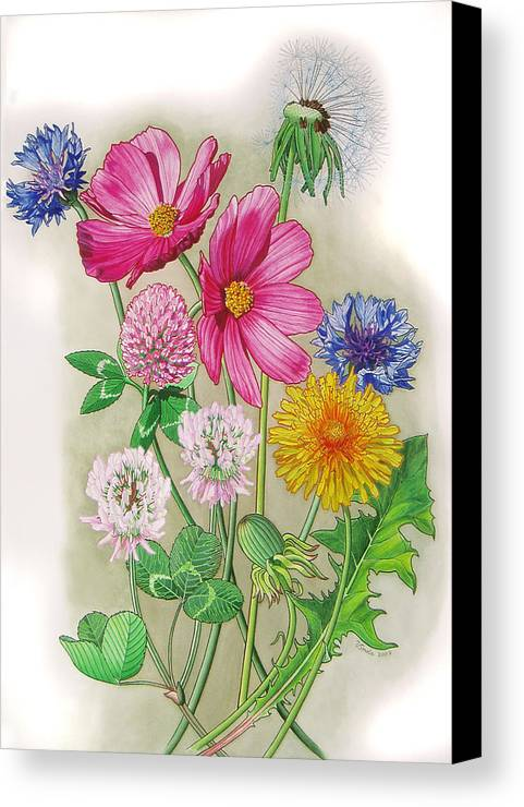 Flowers Canvas Print featuring the painting Midsummer Day Dream by Vlasta Smola