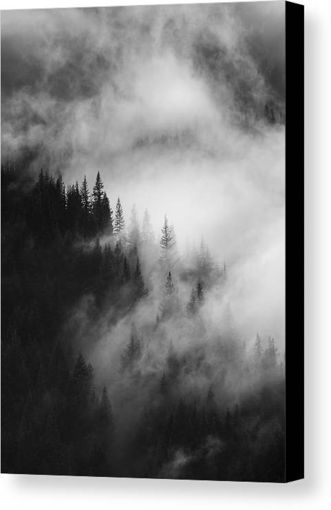 Forest Canvas Print featuring the photograph Mountain Whispers by Mike Dawson
