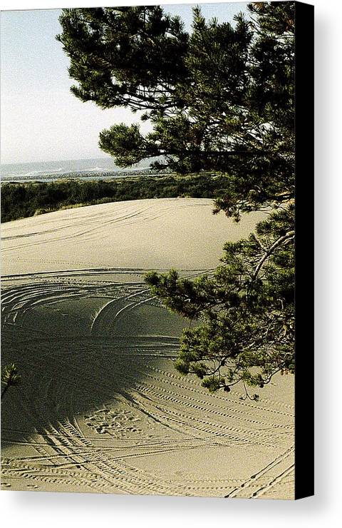 Oregon Dunes National Recreation Area Canvas Print featuring the photograph Oregon Dunes 3 by Eike Kistenmacher