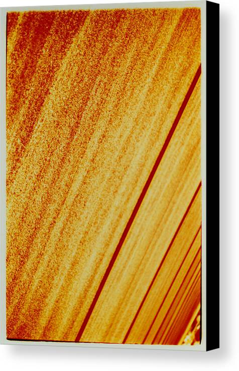 Abstract Canvas Print featuring the photograph Sod by David Rivas