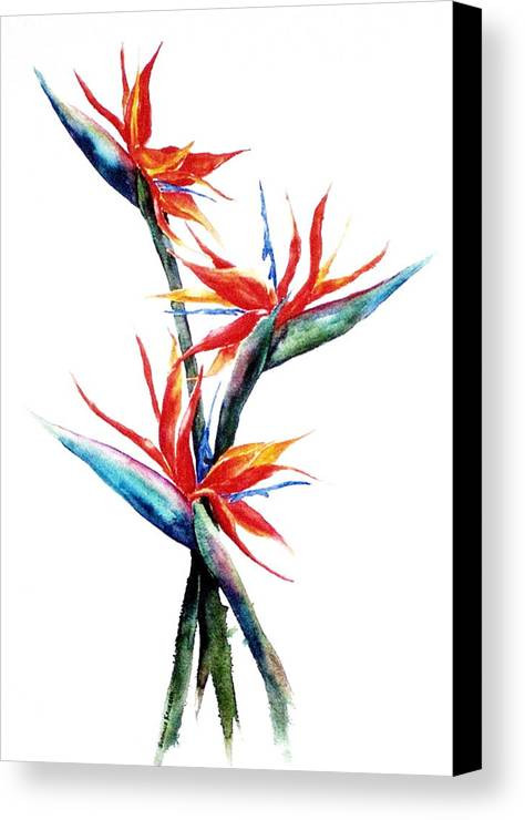 Floral Canvas Print featuring the painting Three Birds by Suzanne Krueger