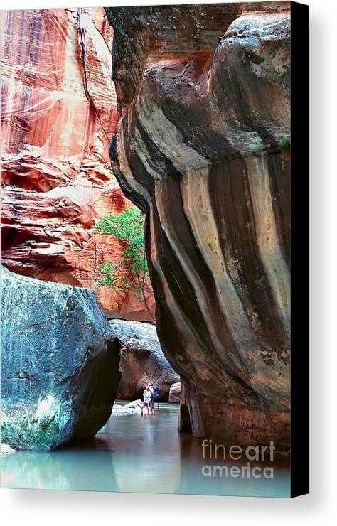 Landscape Canvas Print featuring the photograph Virgin River Narrows by Carl Jackson