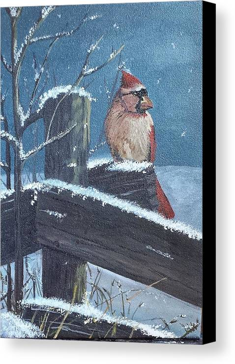 Cardinal Canvas Print featuring the painting Winter Female Cardinal by Sheli Paez