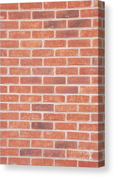 Wall Canvas Print featuring the photograph Brick Wall by Luis Alvarenga