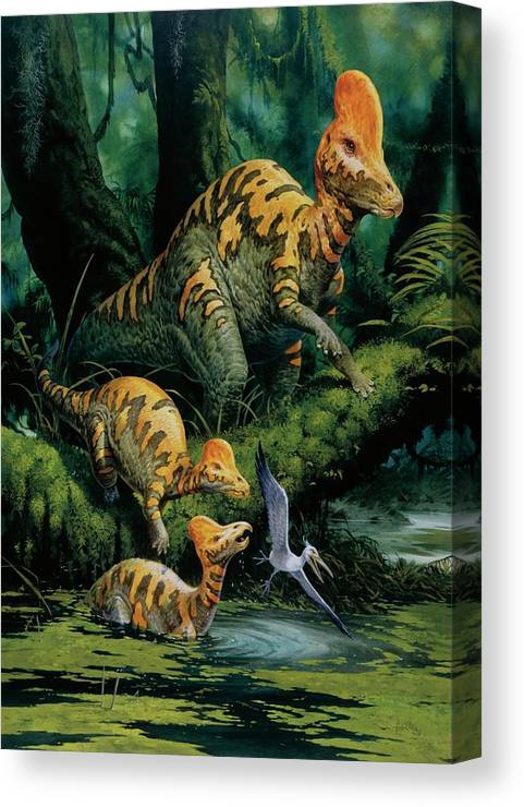 Nobody Canvas Print featuring the photograph Corythosaurus by Deagostini/uig/science Photo Library