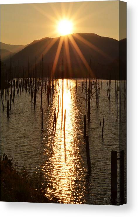 Earthquake Canvas Print featuring the photograph Sunrise At Quake Lake by George Bostian