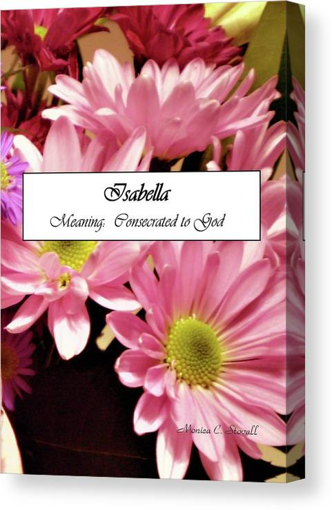 Isabella Name Poster Canvas Print Canvas Art By Monica C Stovall