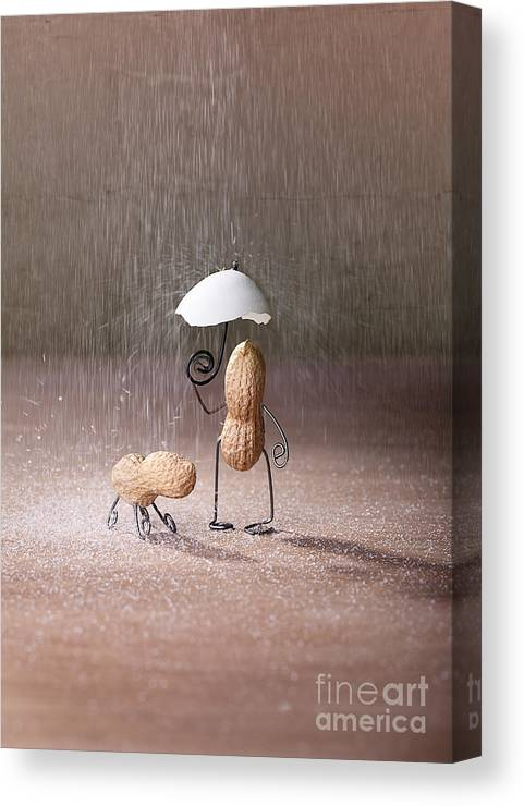 Bad Weather 02 Canvas Print Canvas Art By Nailia Schwarz