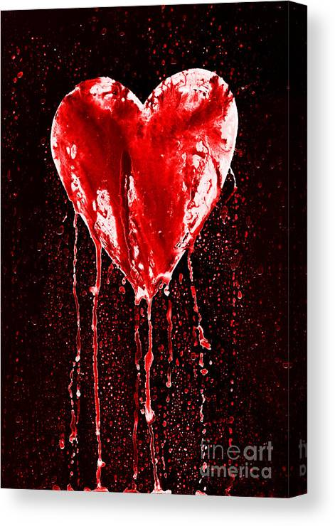 Bleeding Canvas Print featuring the photograph Bleeding Heart by Michal Boubin