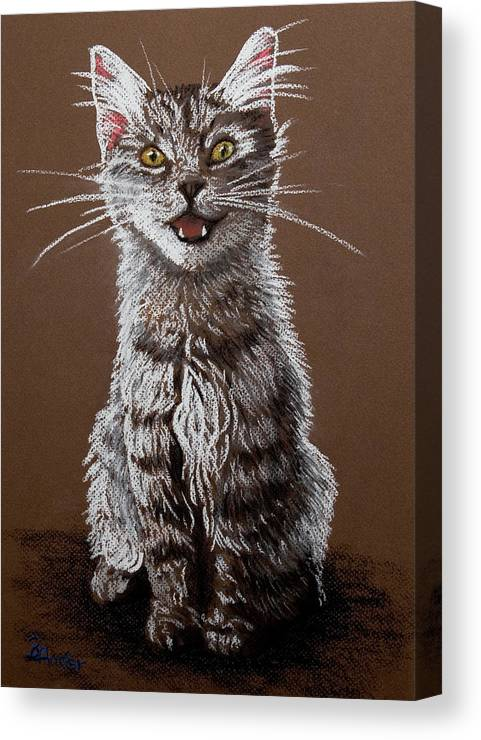 Maine Coon Cat Canvas Print featuring the pastel Cry Baby by Brent Ander