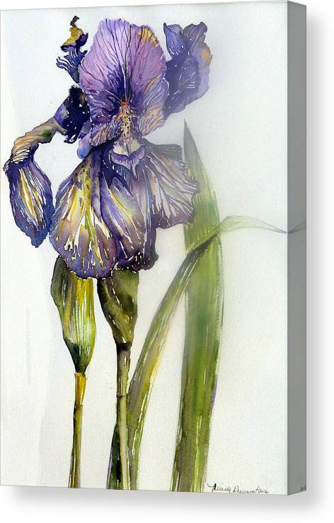 Iris Canvas Print featuring the painting Iris In Bloom by Mindy Newman
