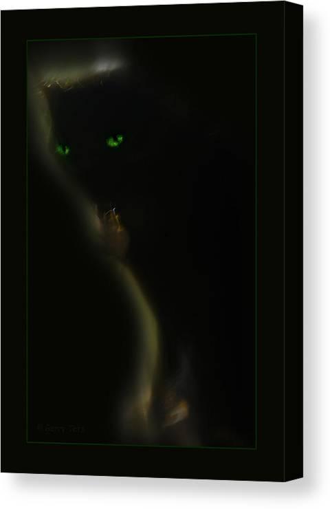 Cat Feline Canvas Print featuring the photograph Romeo 2 by Gerry Tetz
