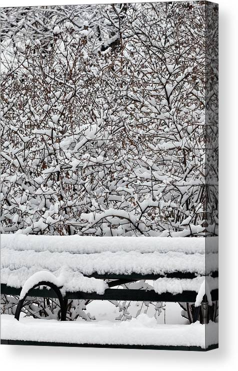 Snow Canvas Print featuring the photograph Snow And Bench by Robert Ullmann