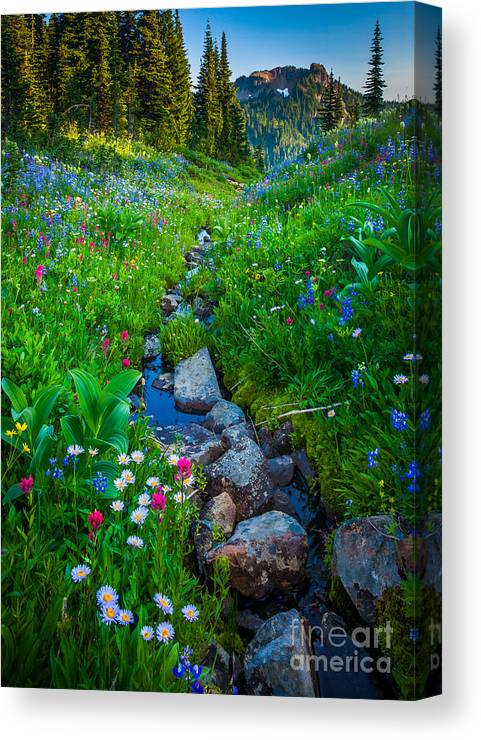 America Canvas Print featuring the photograph Summer Creek by Inge Johnsson