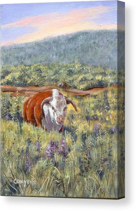 Hereford Bull Canvas Print featuring the painting White Face Bull by Peggy Conyers