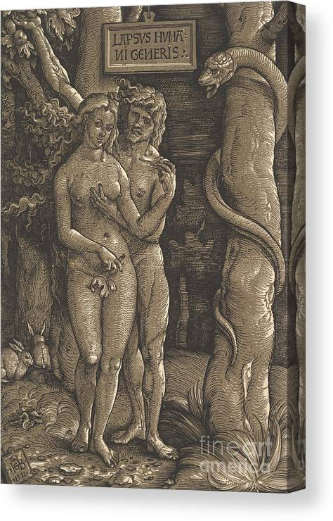 Genesis Canvas Print featuring the drawing The Fall Of Mankind, 1511 by Hans Baldung Grien