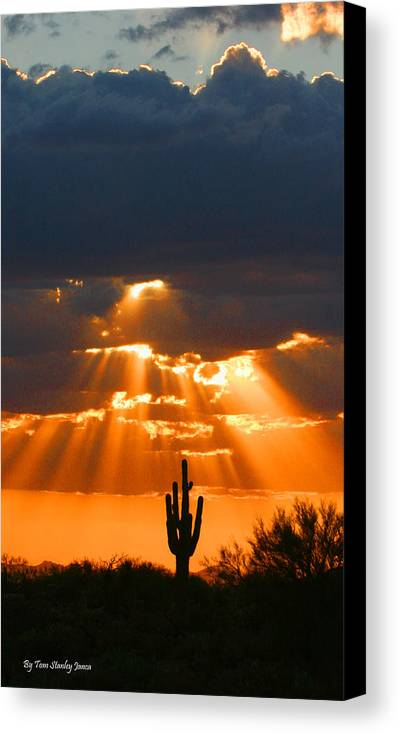 Pre Sunset Sky With Saguaro Canvas Print featuring the photograph Pre Sunset Sky With Saguaro by Tom Janca