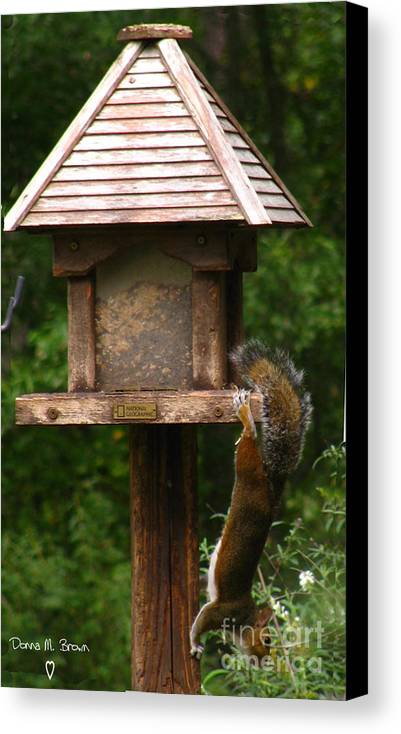 Bird Feeder Canvas Print featuring the photograph Hang On by Donna Brown