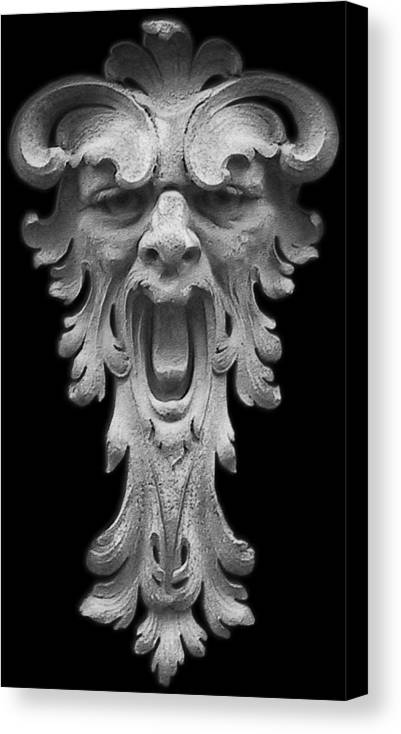 Sad Canvas Print featuring the photograph The Scream by Christine Till