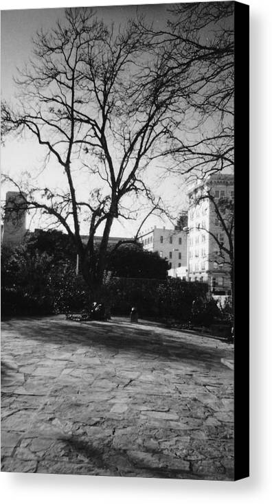 Town Canvas Print featuring the photograph Old Towne by Pharris Art