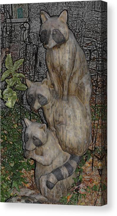 Raccoon Canvas Print featuring the photograph Three Raccoons by Arline Wagner