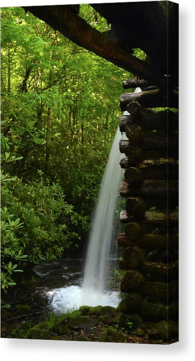 Landscape Canvas Print featuring the photograph Water From The Flume by Pat Turner