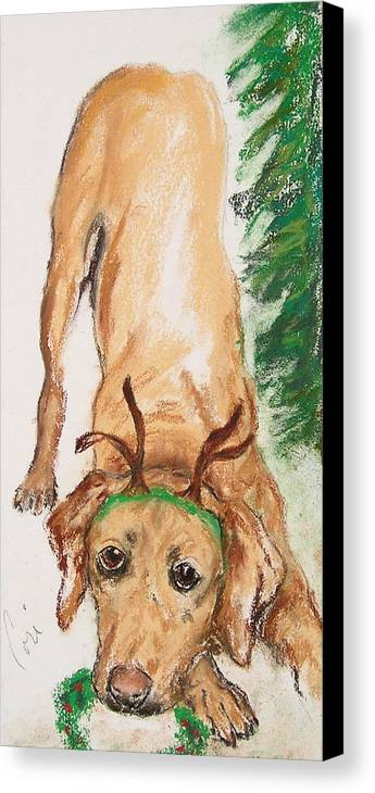 Labrador Canvas Print featuring the drawing Santa's Helper by Cori Solomon