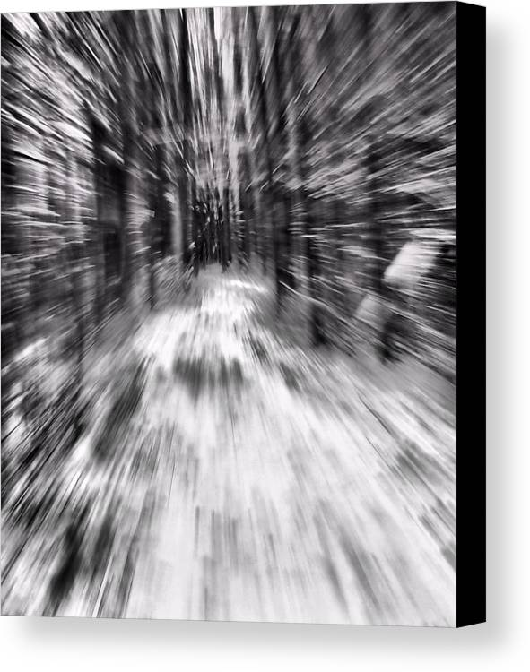 Blizzard In The Forest Canvas Print featuring the photograph Blizzard In The Forest by Dan Sproul