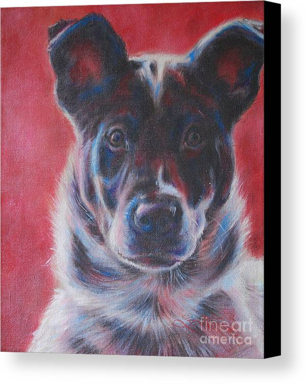 Blue Heeler Canvas Print featuring the painting Blue Merle On Red by Kimberly Santini