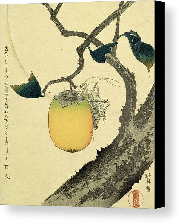 Japanese Canvas Print featuring the drawing Moon Persimmon And Grasshopper by Katsushika Hokusai