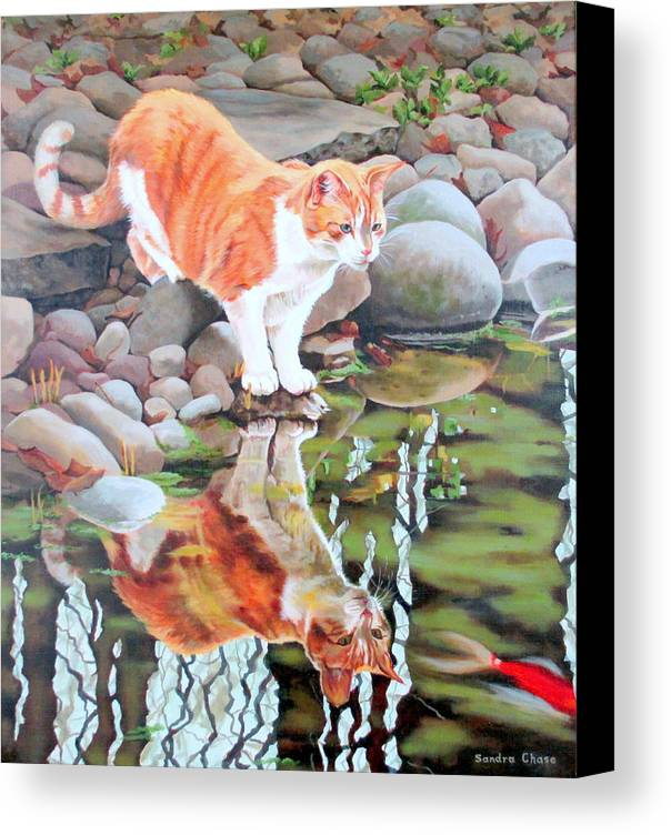 Cat Canvas Print featuring the painting Reflecting by Sandra Chase
