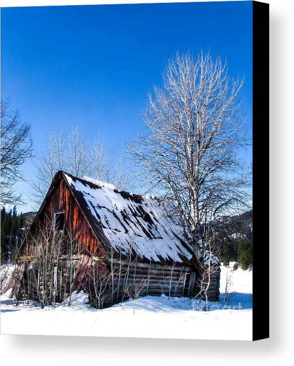 Cabin Canvas Print featuring the photograph Snowy Cabin by Robert Bales