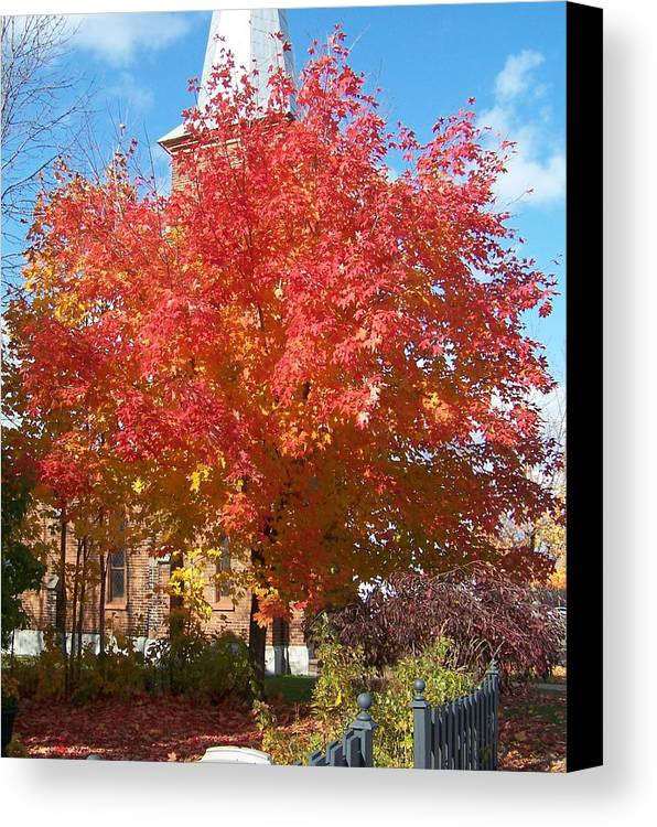 Tree Canvas Print featuring the photograph The Tree By The Church - Photograph by Jackie Mueller-Jones