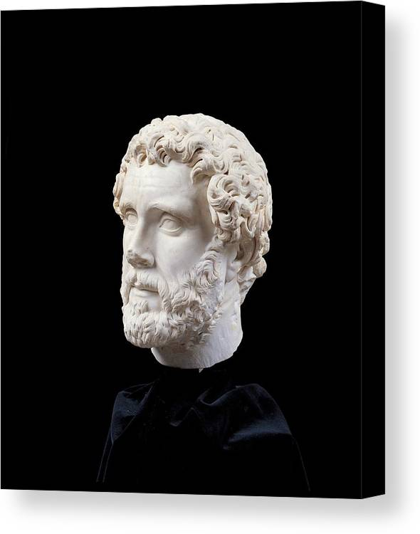 Three Canvas Print featuring the photograph Unknown Artist, Portrait Of Antoninus by Everett