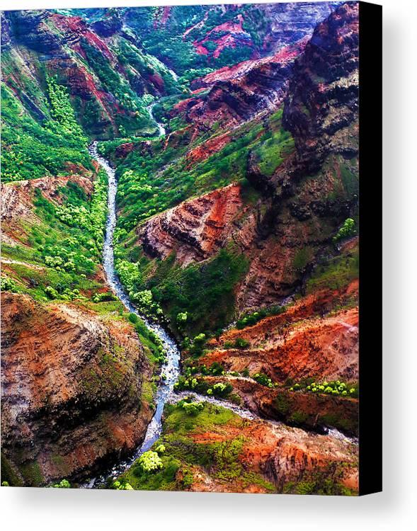 Aerial Canvas Print featuring the photograph Kauai River Canyon by Artistic Photos
