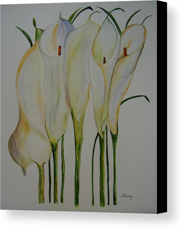 Flowers Canvas Print featuring the painting Callas by Murielle Hebert