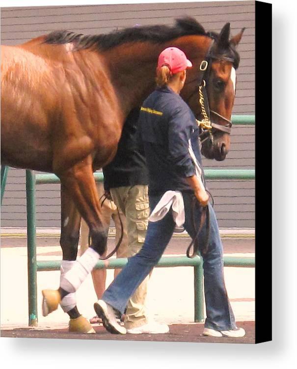 Jockey Canvas Print featuring the photograph In Step by Ian MacDonald
