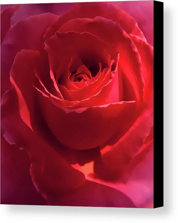 Rose Canvas Print featuring the photograph Scarlet Rose Flower by Jennie Marie Schell
