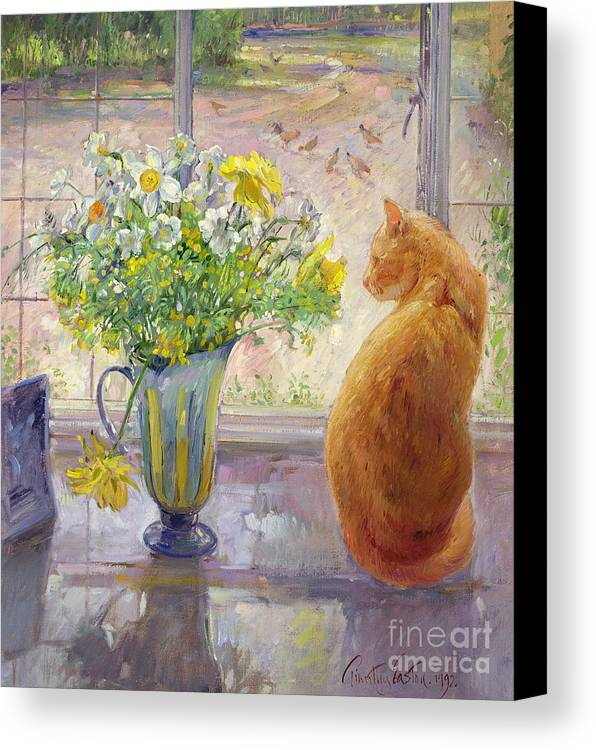 Ginger; Cat; Vase; Narcissi; Chicken; Pheasants Eye; Flower; Flowers ; Window; Open Window; Pheasant Canvas Print featuring the painting Striped Jug With Spring Flowers by Timothy Easton