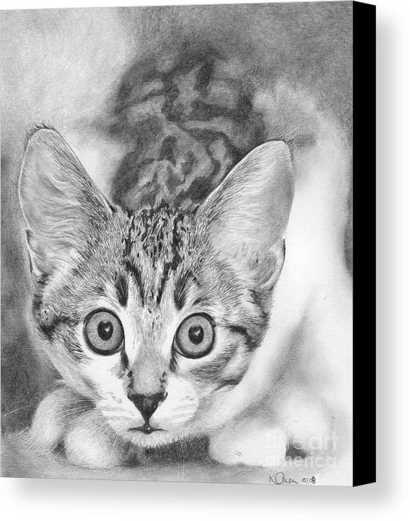 Cat Canvas Print featuring the drawing Tiddles by Karen Townsend