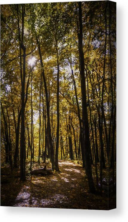 Autumn Canvas Print featuring the photograph Autumns Fire by Scott Norris