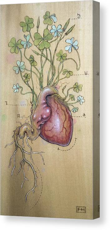 Clover Canvas Print featuring the pyrography Clover Heart by Fay Helfer
