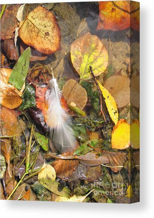 Autumn Canvas Print featuring the photograph Autumn Leavings by Ann Horn