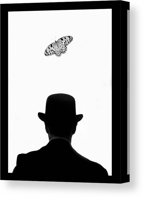 Mature Adult Canvas Print featuring the photograph Man Standing Under Butterfly by Grant Faint